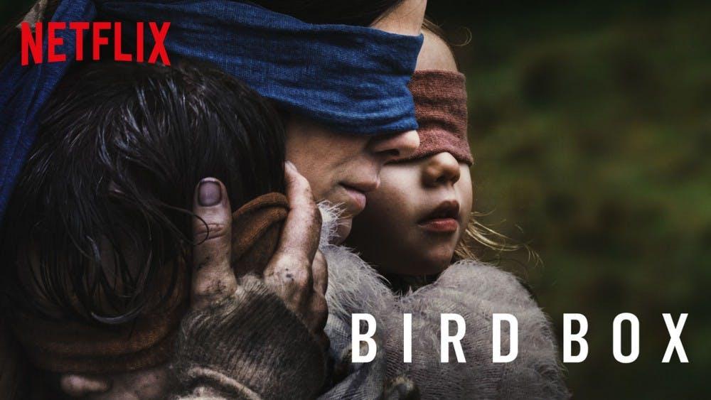 birdboxwide