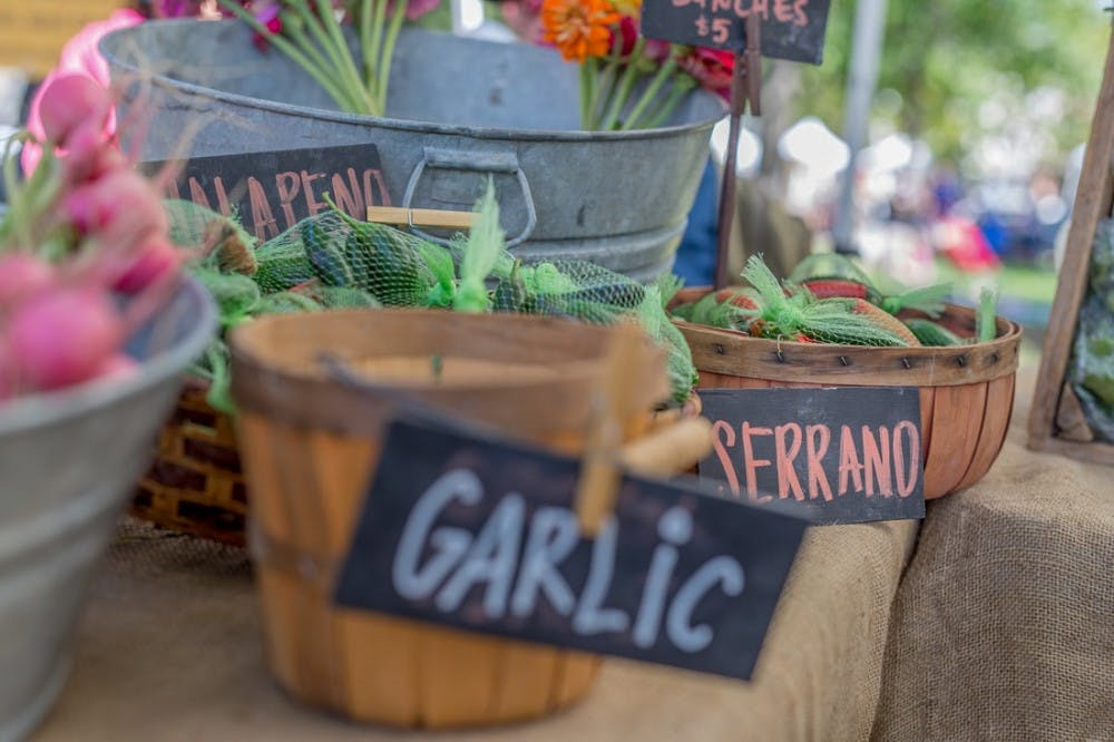 abqms-dt-growers-market-20150919-15_orig