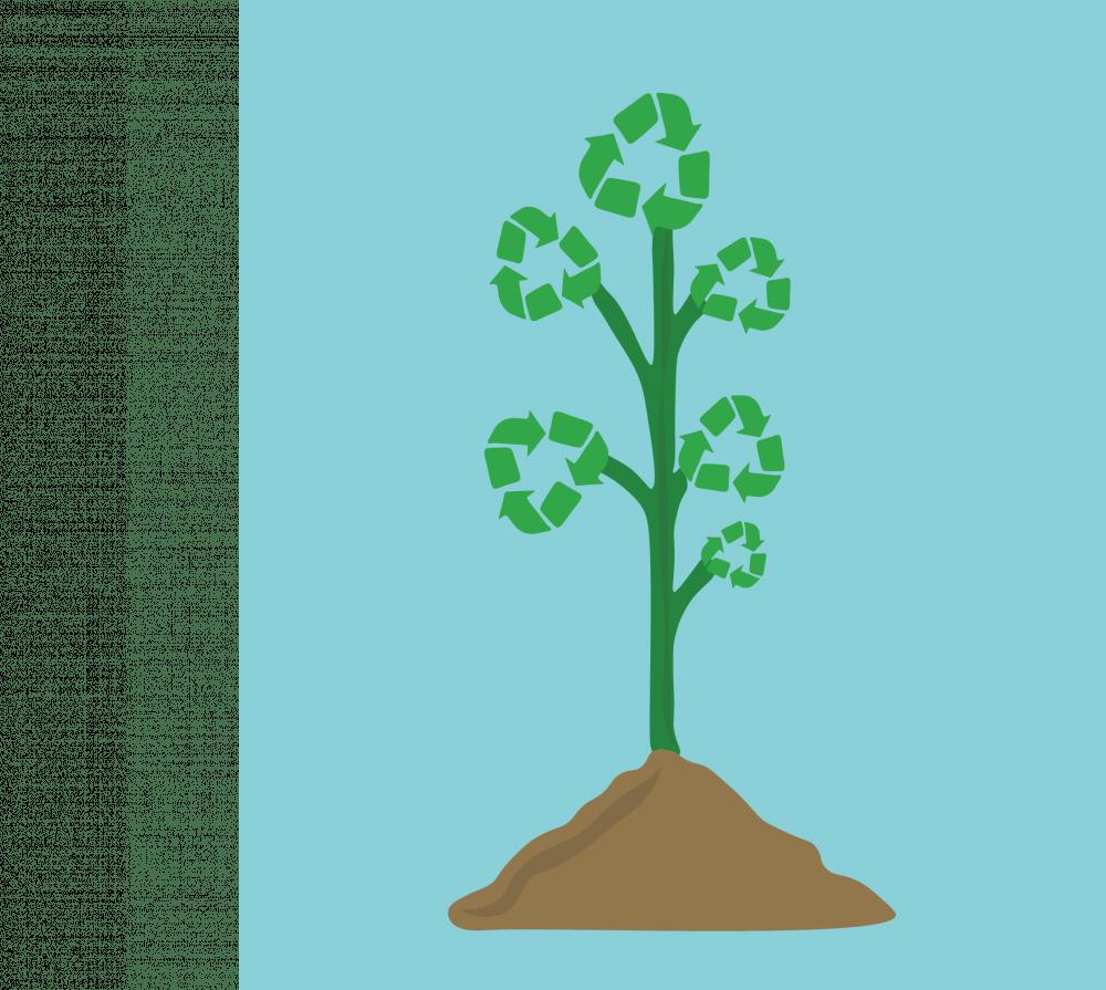 sustainability_grpahic