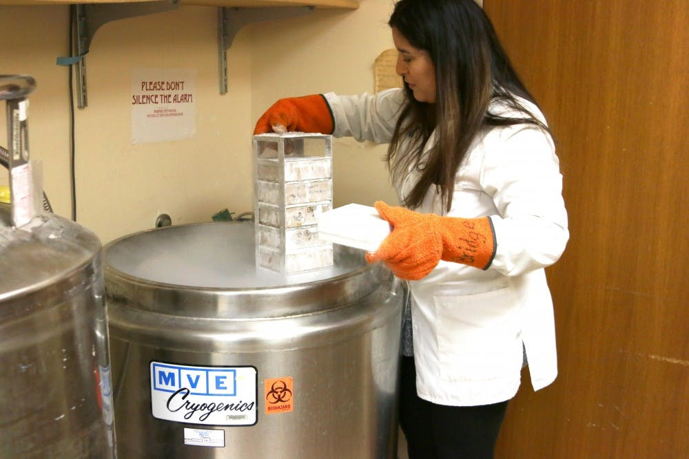 Phd. student Gabrielle Lopez pulls out cell samples for her research from the CO2 incubator.