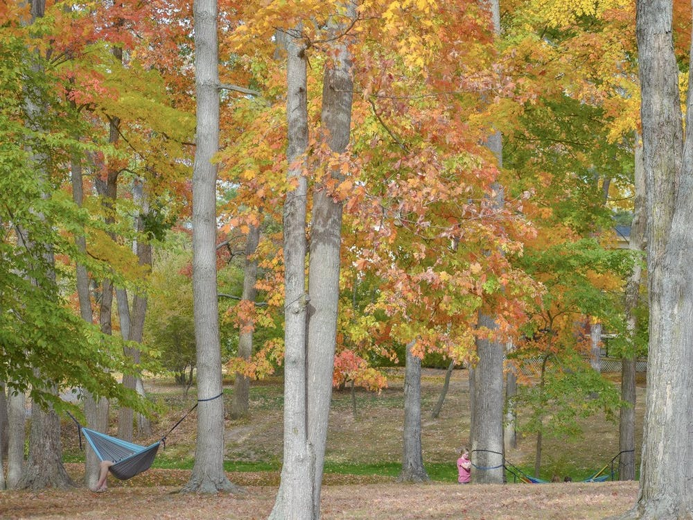 Miami University's hammocking club is making use of spring weather, though their outings are different this year due to the pandemic.