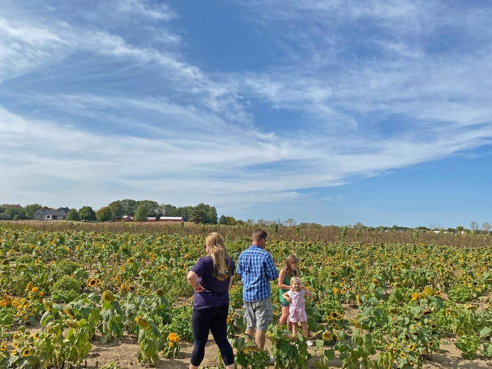 <p>In spite of COVID restrictions, many families are finding fall fun at pumpkin patches and autumn farms this year. Photo by Grace Killian. </p>