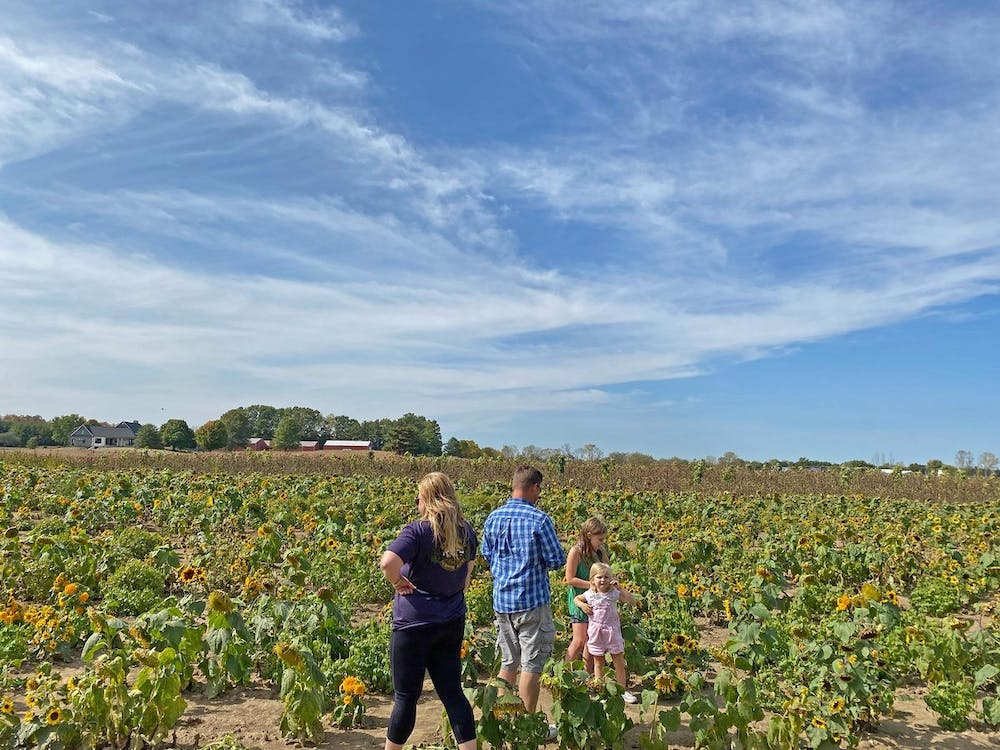 In spite of COVID restrictions, many families are finding fall fun at pumpkin patches and autumn farms this year. Photo by Grace Killian.