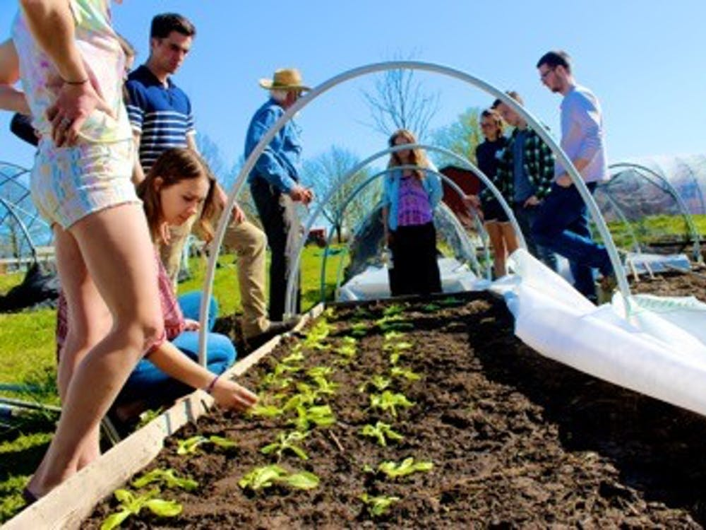 Students planting crops in April | Photo by Carder Gilbert