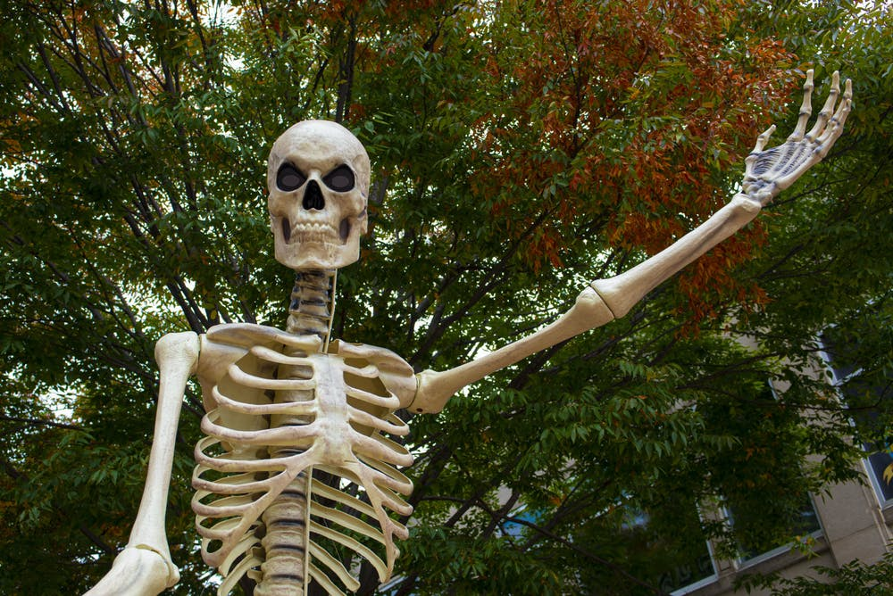 <p>A giant skeleton greets people walking around downtown Kalamazoo to celebrate SkeleTour, an annual event held during the month of October. Shot on Oct. 17, 2020.</p>