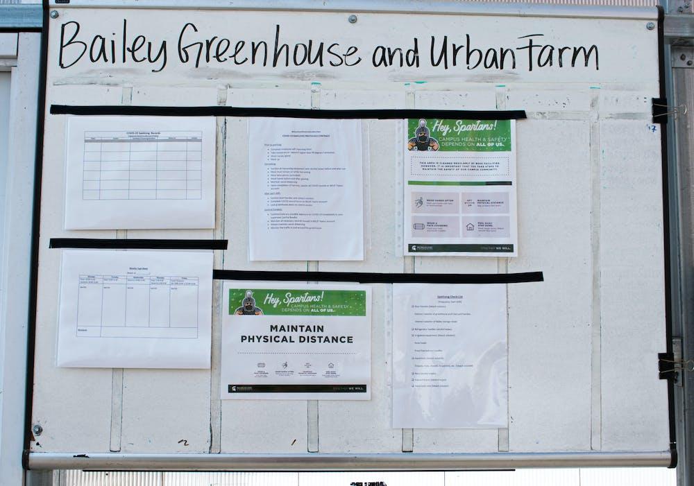 msu-rise-bailey-greenhouse-demay_1