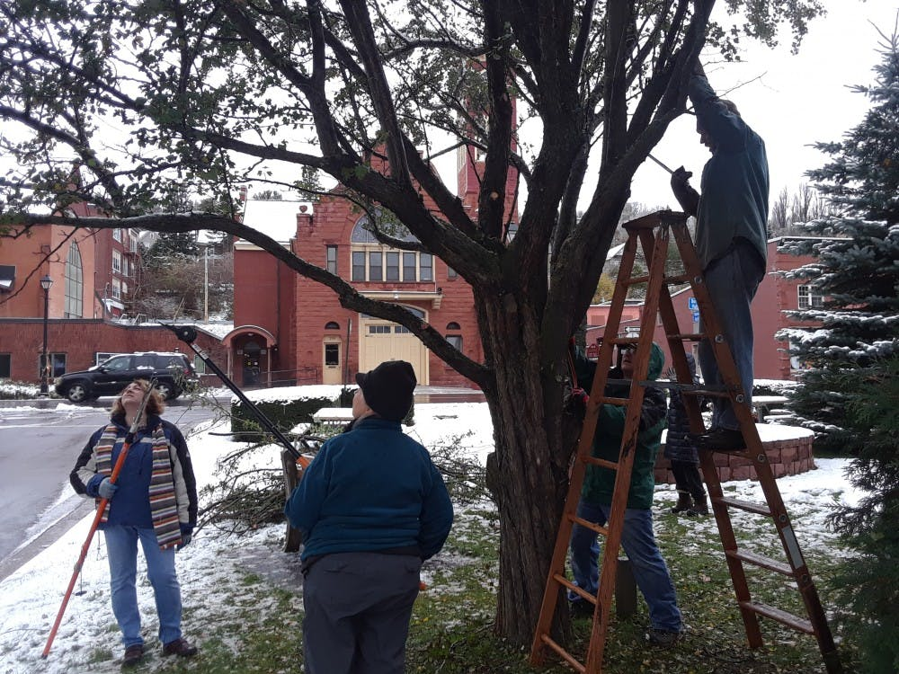 <p>Volunteers prune a tree at Memorial Park in Hancock, Mich. Their efforts were a part of a workshop that was run through Houghton County's MSU Extension, whose offices are 500 miles from East Lansing. Photo courtesy of Mike Schira.</p>