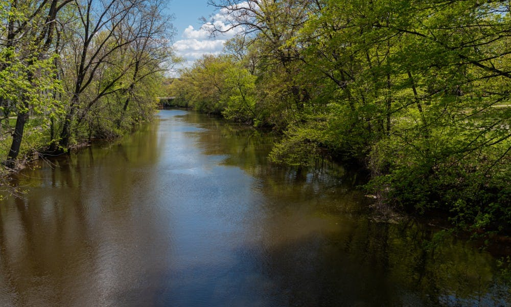 <p>The Red Cedar River photographed on May 15, 2019.</p>