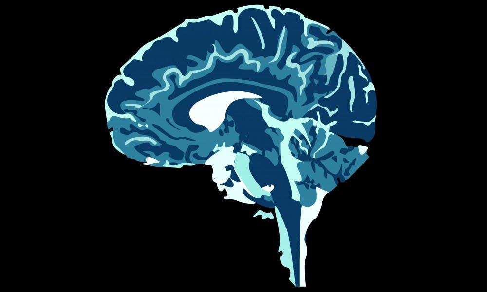 brain_thumbnail_web