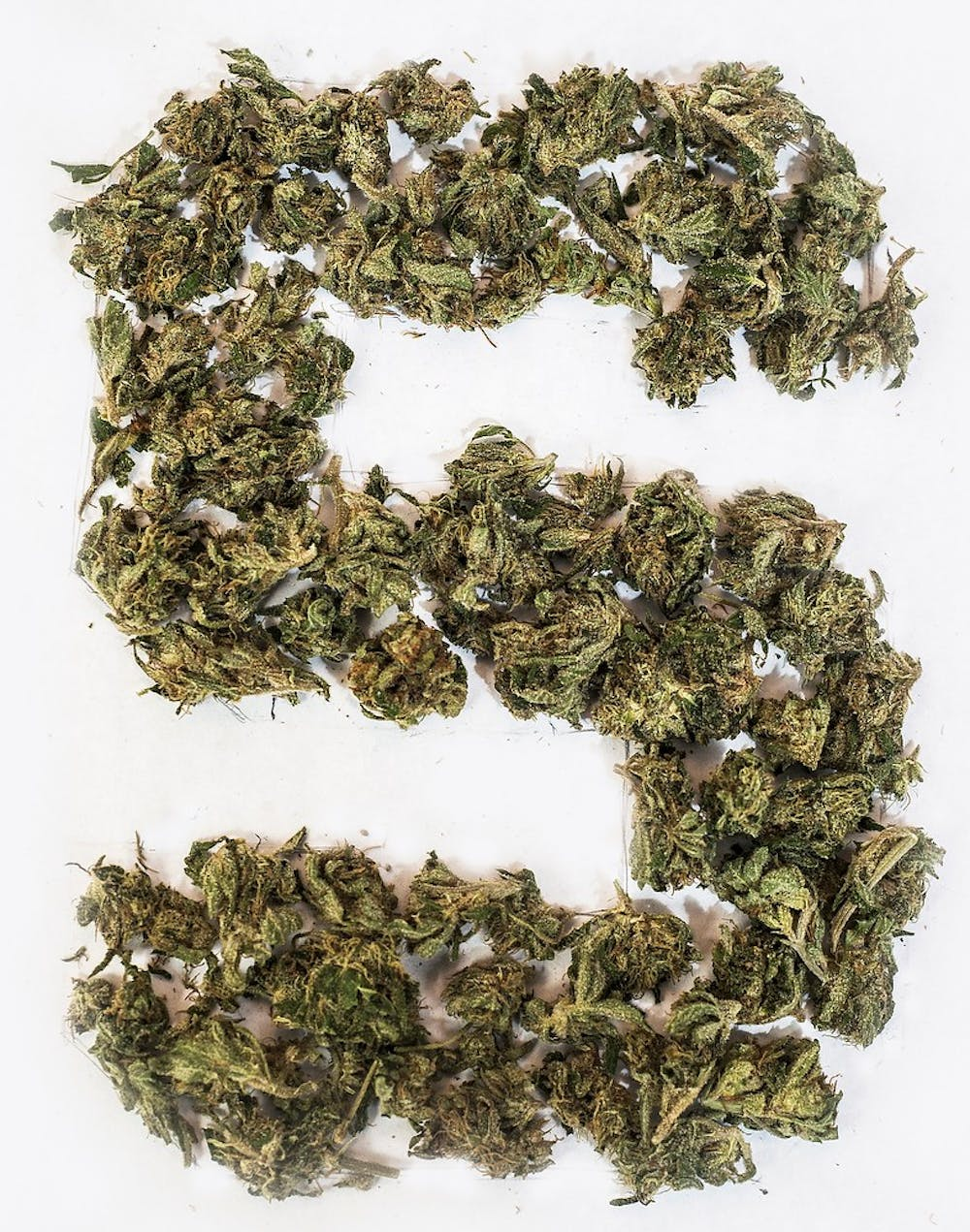 <p>Marijuana shaped in the form of a Spartan 'S.' Erin Hampton/The State News</p>