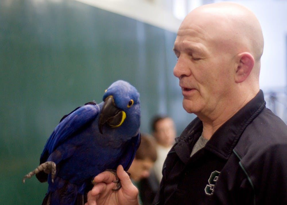 "<p>Indigo, left, sits on the arm of <span class=""caps"">MSU</span> wrestling head coach Tom Minkel Tuesday in the wrestling room at IM Sports-West. Minkel has had the bird for almost all her life, since she was six months old. She still regularly attends wrestling practice almost 14 years later. </p>"
