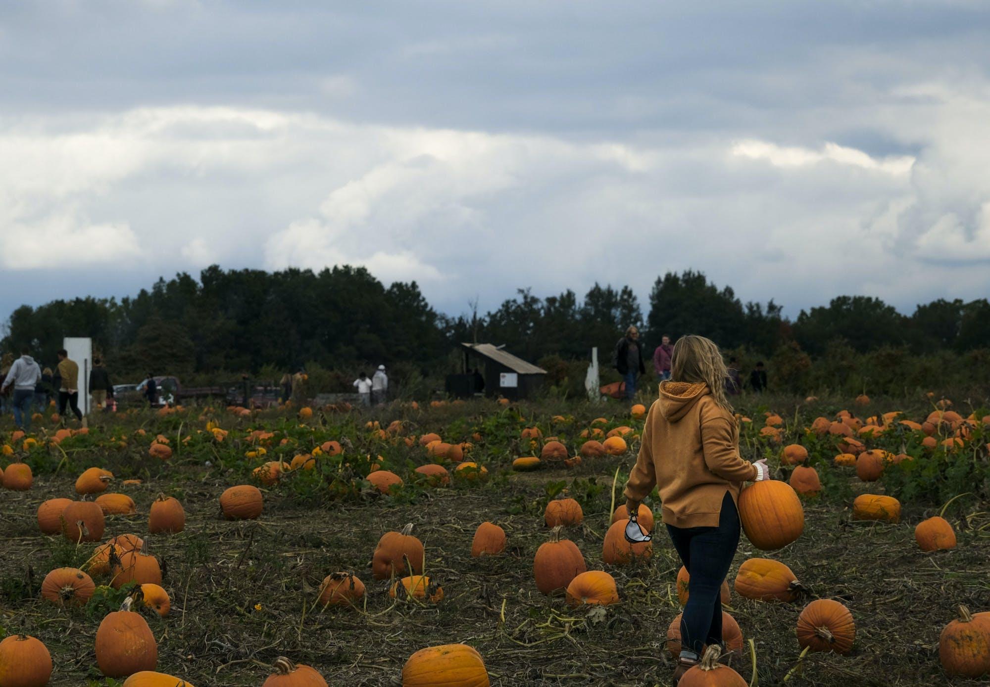A person walks through a pumpkin patch while carrying a pumpkin.