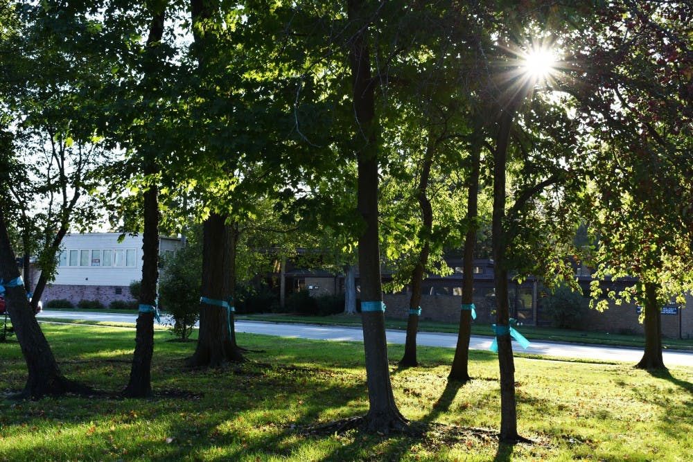<p>Teal ribbons were displayed on trees outside of the East Lansing Public Library prior to President Samuel Stanley Jr. speaking about sexual assault on Oct. 8, 2019.</p>