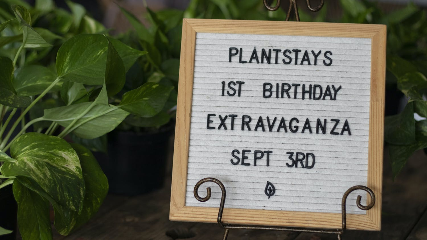 Plantstay, a local plant shop, is having its one-year anniversary on Friday, Sept. 3, 2021. To celebrate, the director and owner, Bren Strickland, will give away two gift cards and 100 gift bags.