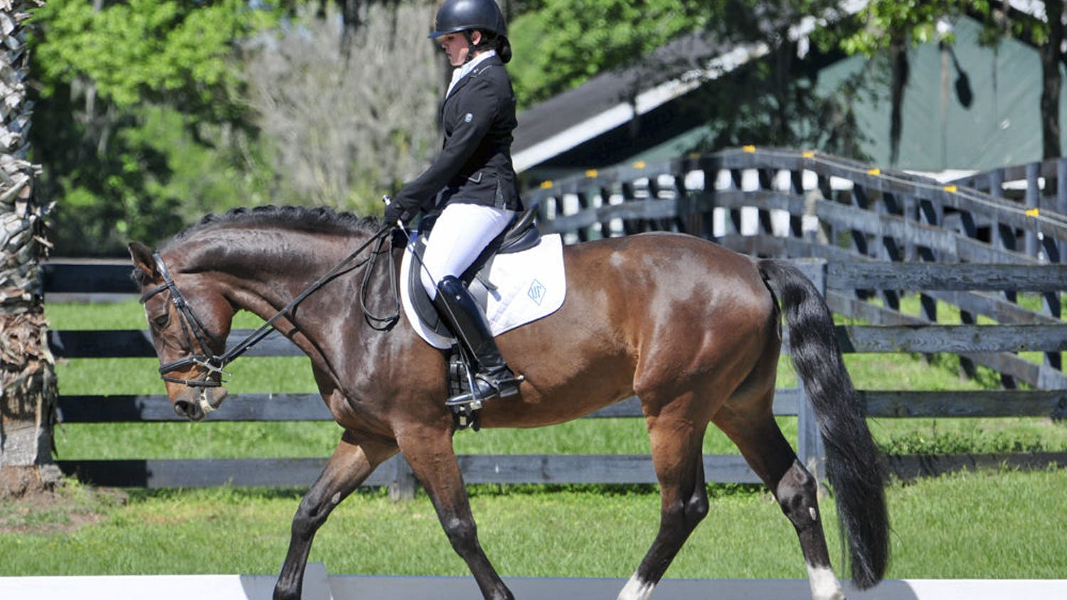 Alexis Rossetti, a 19-year-old UF political science and international studies sophomore, is one of five UF students who will compete in the Intercollegiate Dressage Association's 2016 National Championship in New Jersey on Saturday and Sunday.