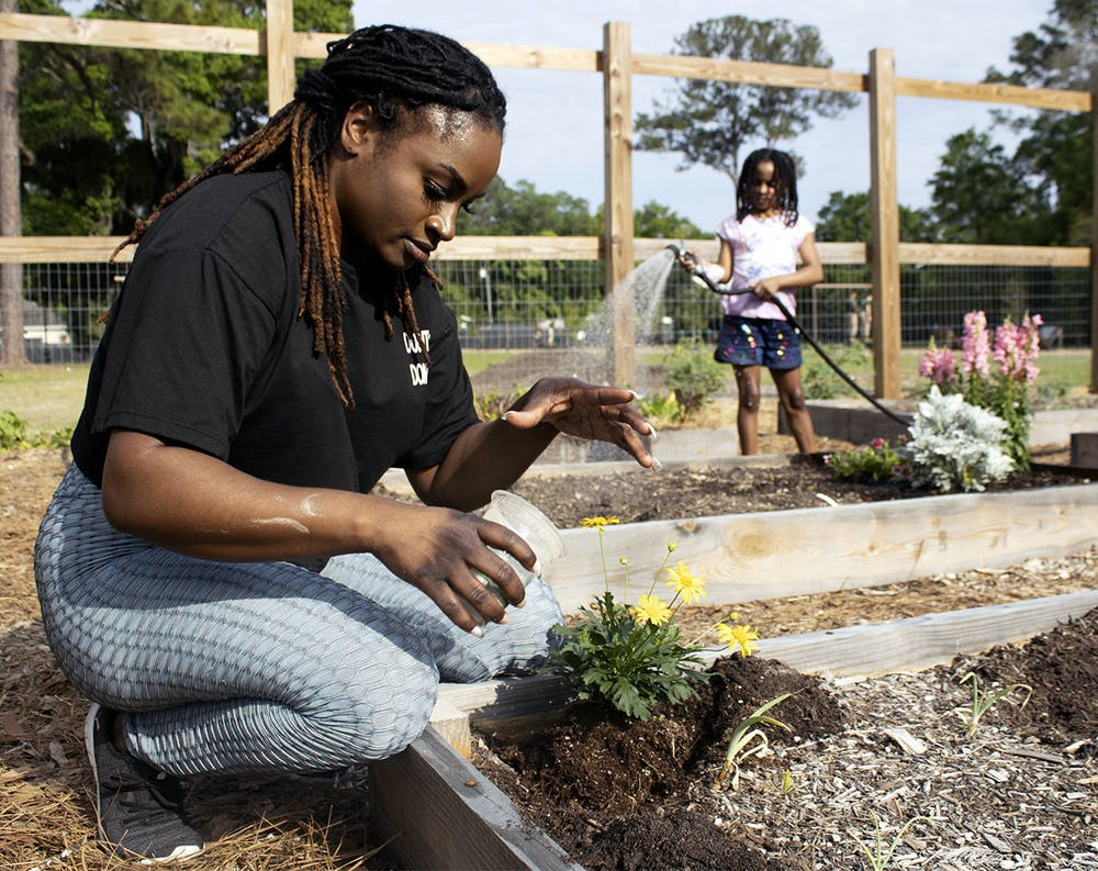 <p></p><p>Kimberly Brown, 30 (left), sprinkles fertilizer around newly planted daises as her 7-year-old daughter, Bella Smith (right), waters a garden plot behind her on Monday, March 29, 2021. They spent the day at Reserve Park for the second Gainesville Black Garden Network meeting since the group formed in February.</p>
