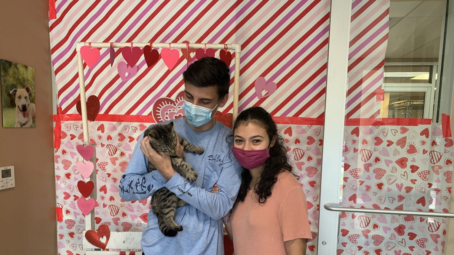 Tyson Torchia (left) and Nathaly Barrantes (right) hold their new kitten, Silas, at Alachua County Animal Services.