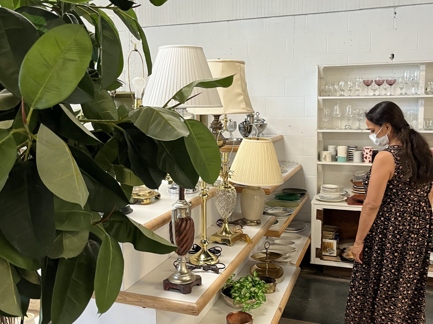 A customer examines a serving platter among the shelves of plates in the ReStore on Oct. 12. The store relocated on Sept. 28 to 2301 NW Sixth St. with a soft opening. It plans to hold a ribbon-cutting Nov. 5