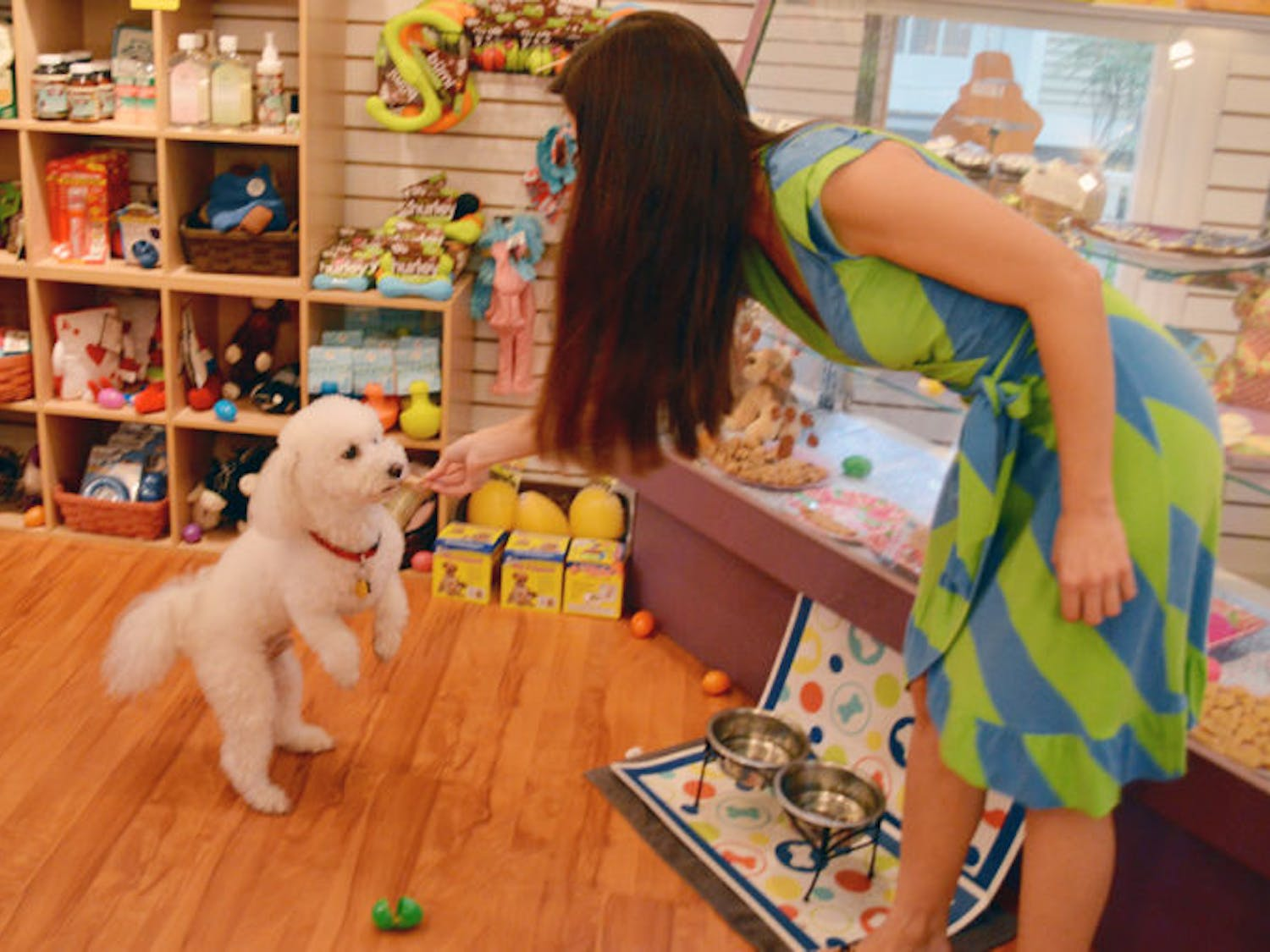 Colleen O'Fallon, a UF alumna and owner of Sweet Paws Bakery, helps Spike, a 7-year-old bichon frise and poodle mix, receive his reward for successfully finding an Easter egg. Sweet Paws hosted an Easter egg hunt for dogs Friday evening. Eggs contained dog treats.
