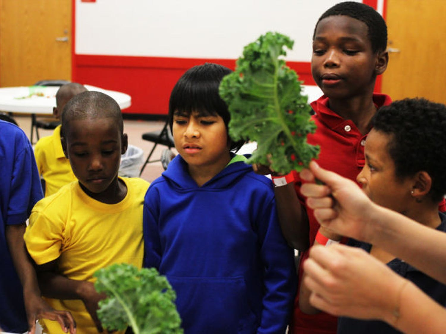 Children learn about fresh produce from Fostering Sustainable Behavior: Local Food Systems UF honors class students Wednesday afternoon at the Porters Community Center.