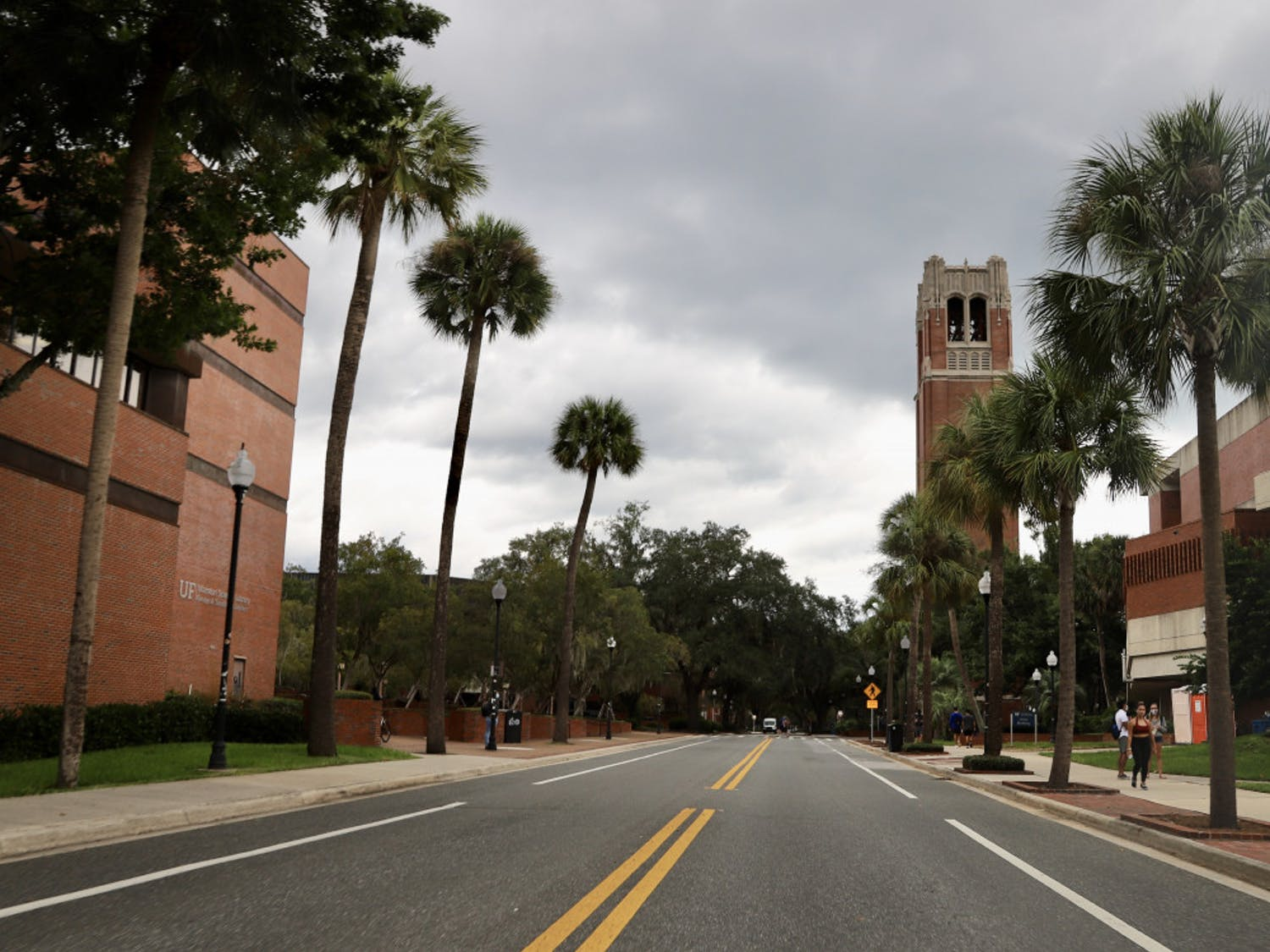 Photo of Newell Drive with Century Tower and Marston Science Library visible in the view
