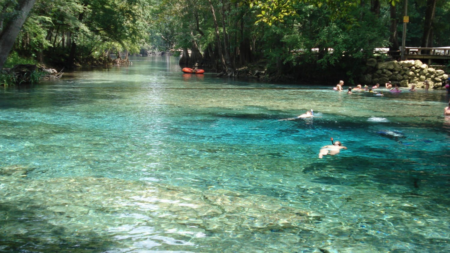 Ginnie Springs is located just outside of Gainesville in High Springs, Florida.