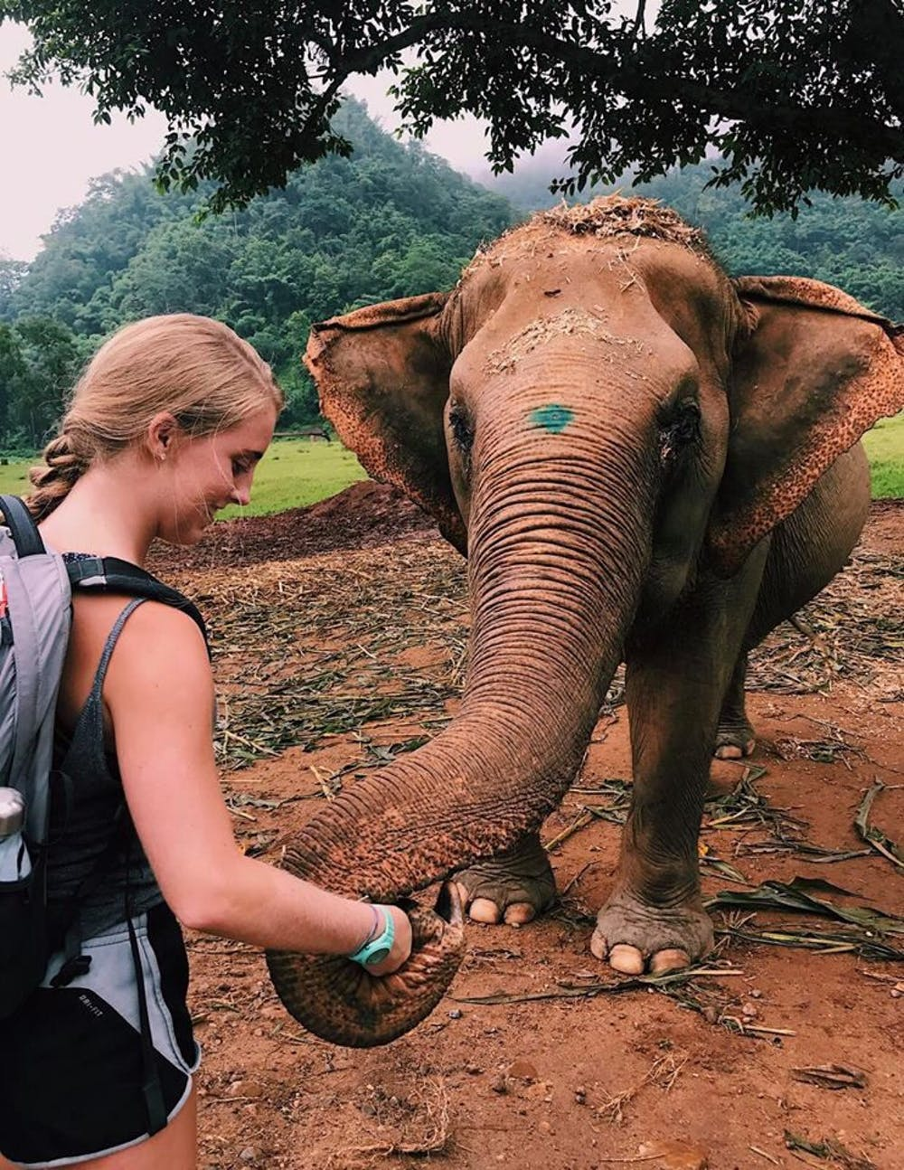 "<p><span id=""docs-internal-guid-da74b9da-dbbf-6242-df20-49857575a0b6""><span>Megan McDowell, a 19-year-old UF animal sciences sophomore, bonds with an elephant she's been treating in Chiang Mai, Thailand.</span></span></p>"