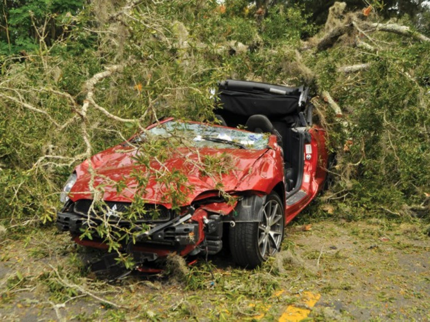 A damaged Mitsubishi Eclipse Spyder sits under a large oak tree Thursday afternoon. Earlier that day, the tree tipped over and landed on West University Avenue, blocking eastbound and westbound traffic for about three hours. A Gainesville Fire Rescue crew freed a 30-year-old woman trapped in the car and rushed her to Shands at UF.