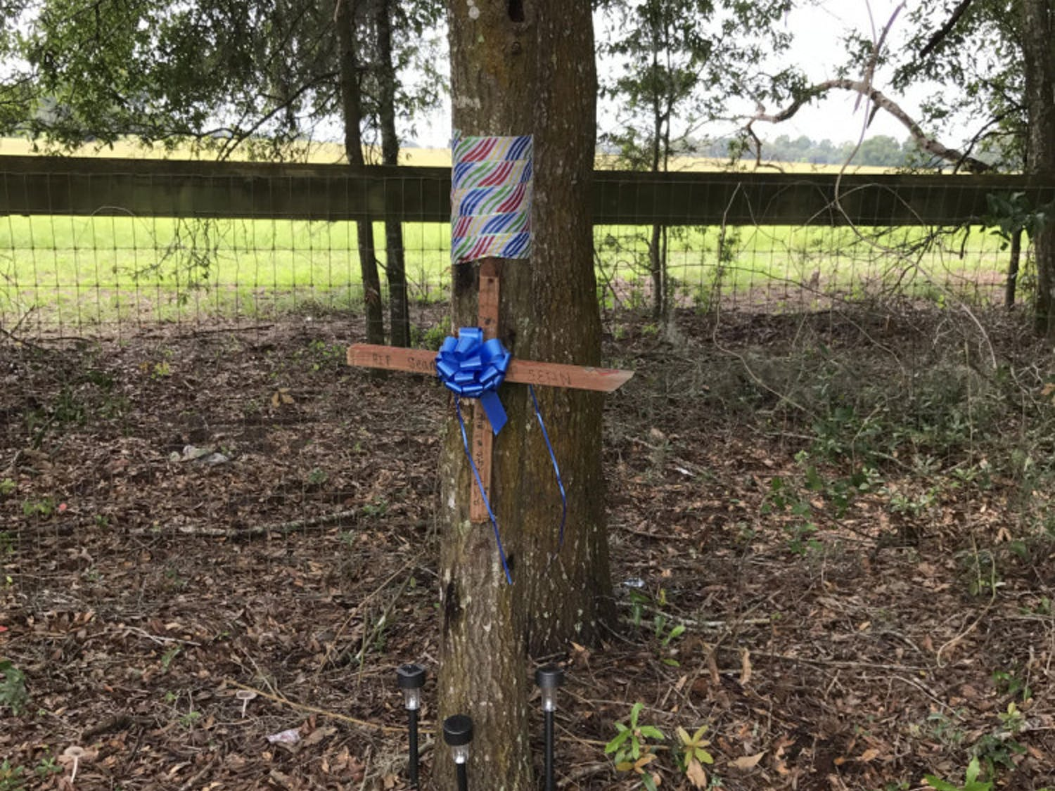 """The tree Sean crashed into is marked by a cross. """"RIP Sean"""" is scrawled across it in permanent marker, along with """"RIP — Kate will miss you."""""""