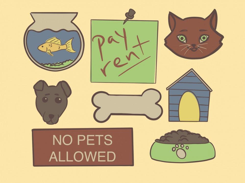 pets rent