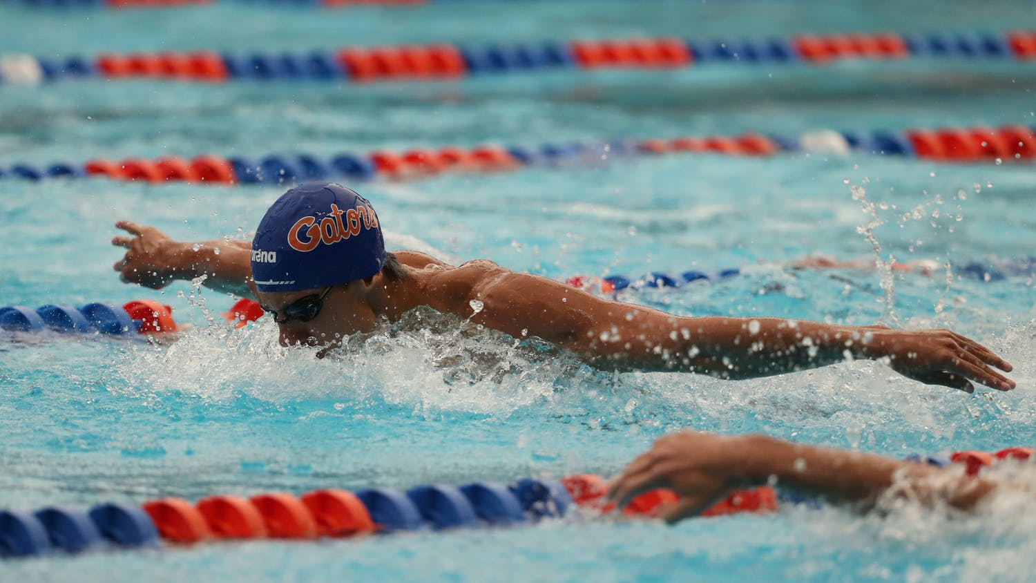 A Florida swimmer competes at the Stephen C. O'Connell Center Natatorium in Gainesville, FL / UAA Communications photo by Hannah White