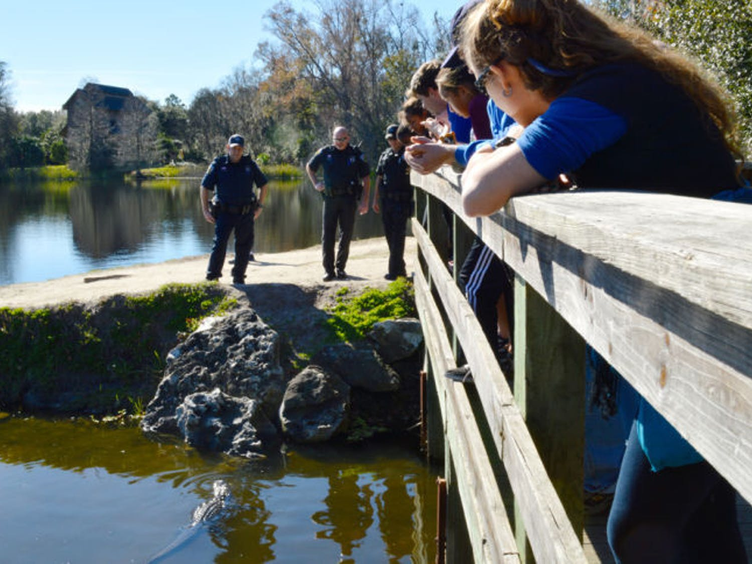 University Police officers prepare to remove an alligator from Lake Alice on Monday. The gator had a hook stuck in its mouth.
