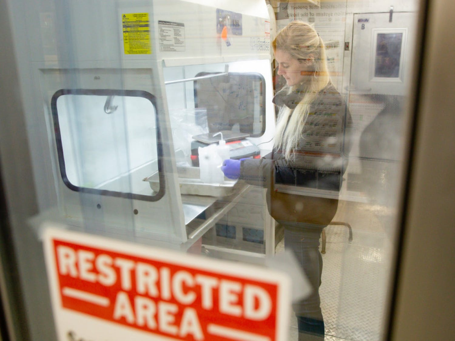 Christina Davis working in a microbiology and cell science lab in preparation for field work in Antarctica on Tuesday, November 20th, 2018.