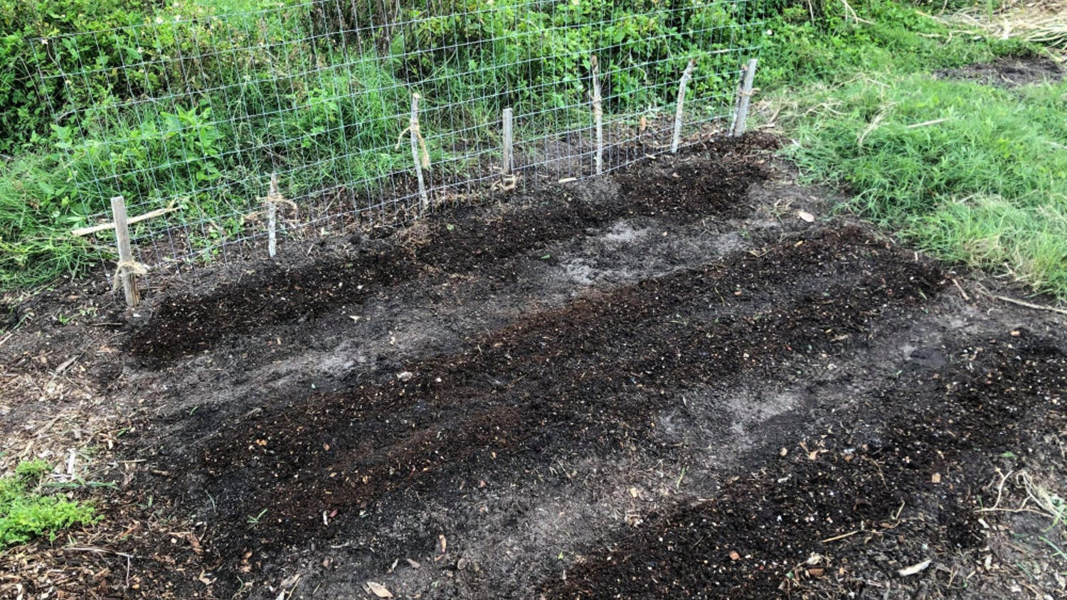 Composting is a sustainable process that reduces greenhouse emissions. Daisy Andrews, a 22-year-old UF natural resource conservation senior, adds compost (the darker lines) on top of the seeds she planted.