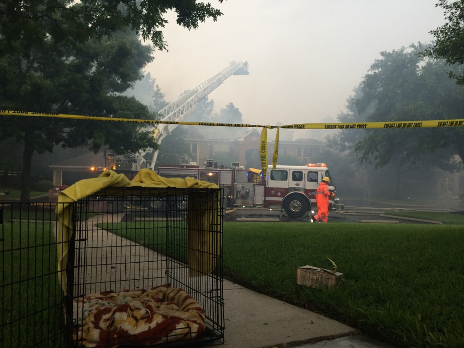 All 16 residents and their pets were reportedly unharmed in the fire.