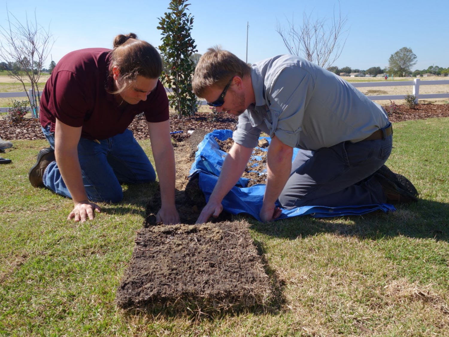 Eban Bean, lead researcher on the team, and Marc Thomas, a student studying agricultural and biological engineering, lay out compost. The team is researching whether compost can reduce the amount of water used for residential lawns.