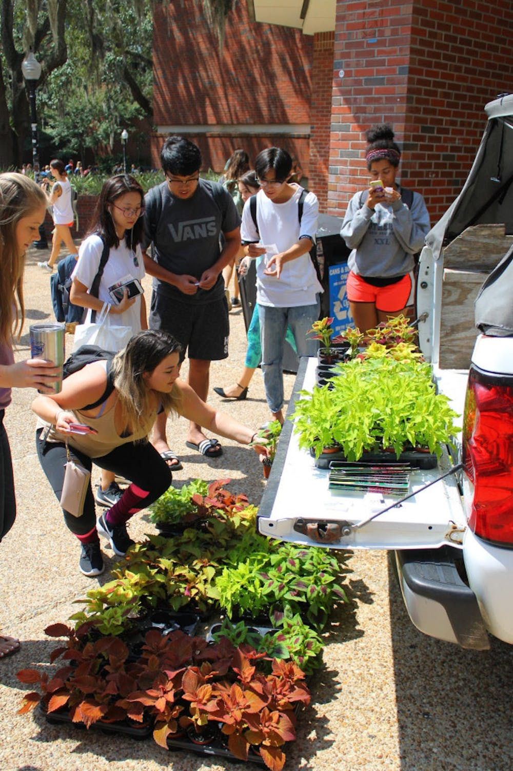 "<p dir=""ltr"">Students pick their coleus plants, donated by the Collegiate Plant Initiative, to take home on Wednesday.</p>"