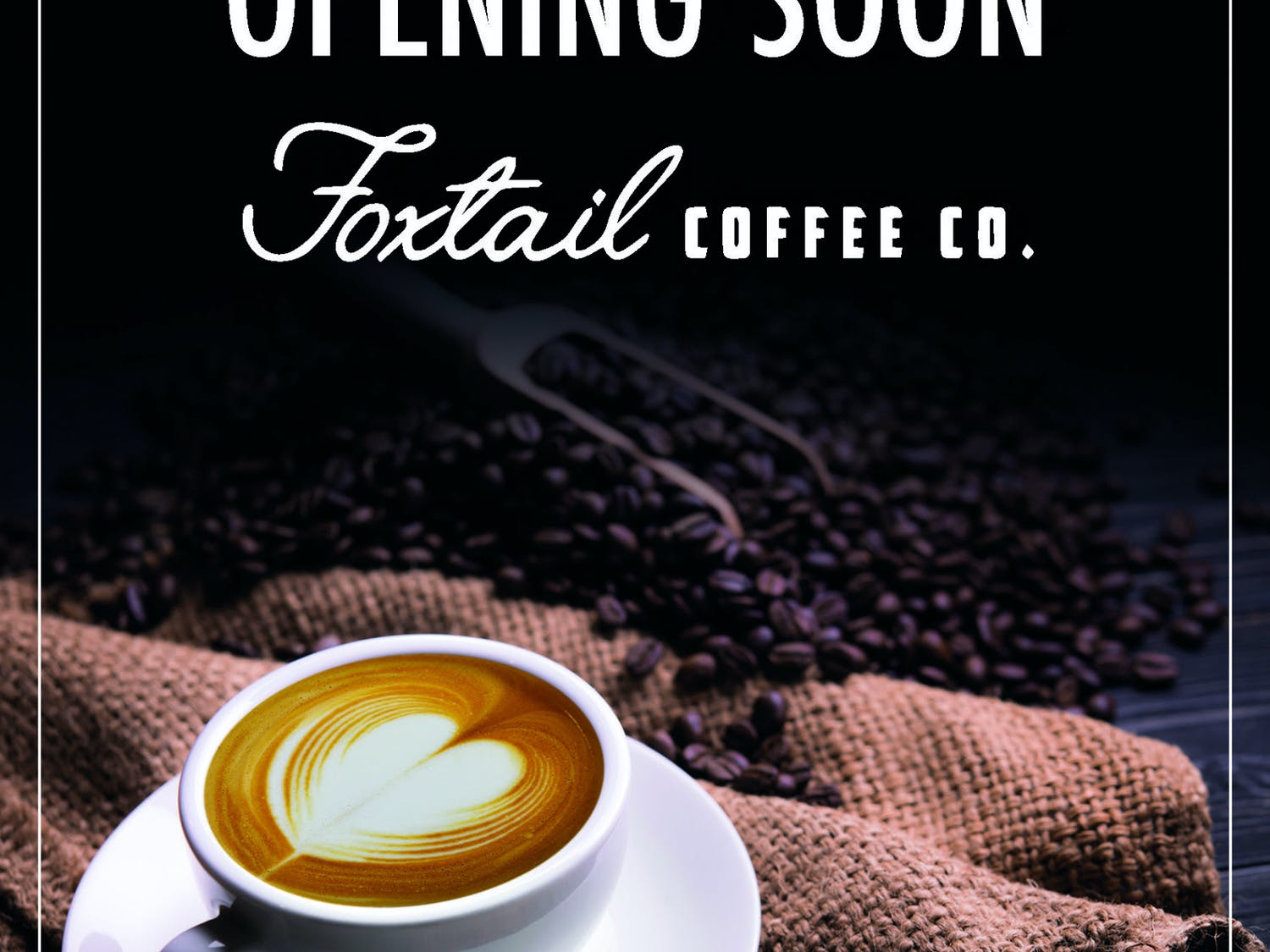 From drinks like cold brews and chai tea lattes, or bakery treats such as chocolate croissants and warm banana bread, Foxtail will offer Gainesville residents a wide variety of flavors. (Courtesy to The Alligator)