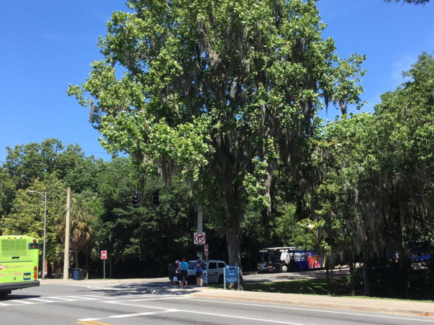 UF's moon tree is near the J. Wayne Reitz Union Bus Loop.