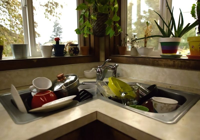 Window plants gaze down at the overflowing of dishes in the sink.Photo Illustration by Cole Carden