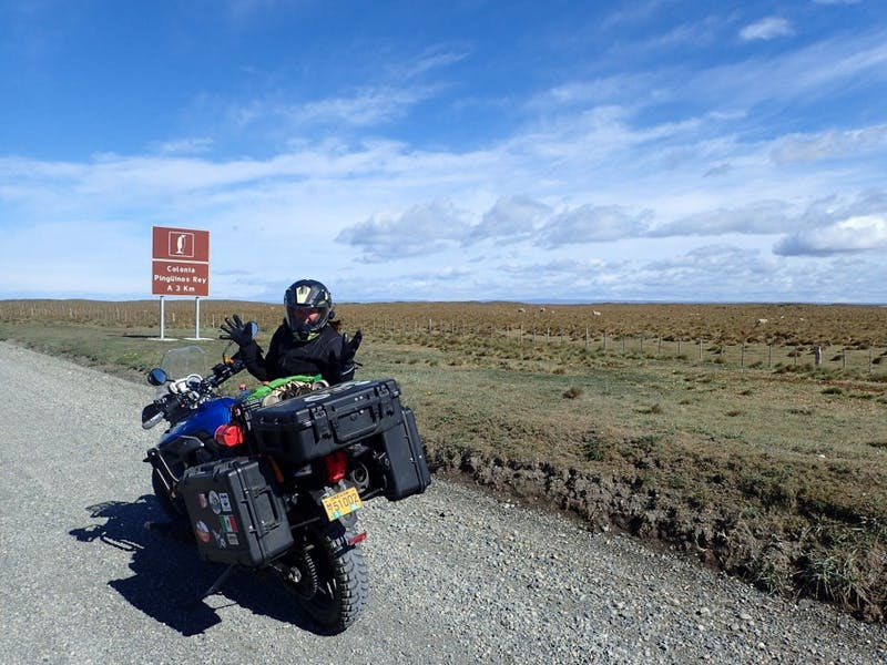 In Tierra del Fuego, Chile, Prestholdt is almost to the colony of king penguins. Photo courtesy of Tara Prestholdt.