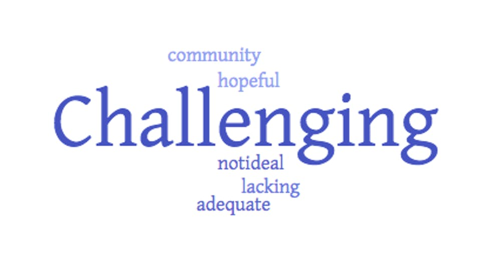 When asked to describe online classes in one word, these were professors' responses. The bigger the word, the more frequently it was mentioned. This image was created using worditout.com.