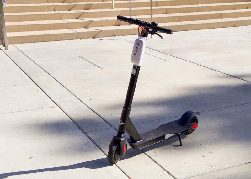 The Bird electric scooter, one of the larger e-scooter companies, will come back to Portland this month. In the past, the e-scooters gave students an easy means for transportation.