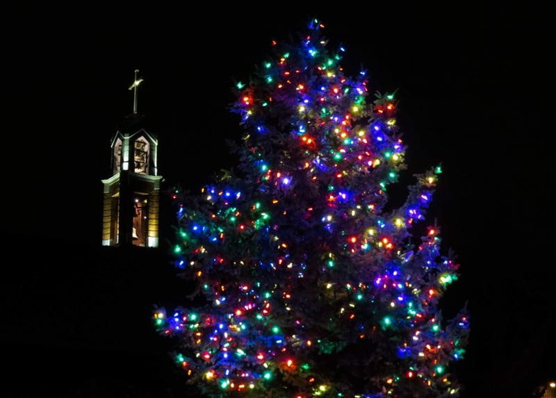 Each Christmas tree on UP's campus has its own personality. Which tree fits yours?