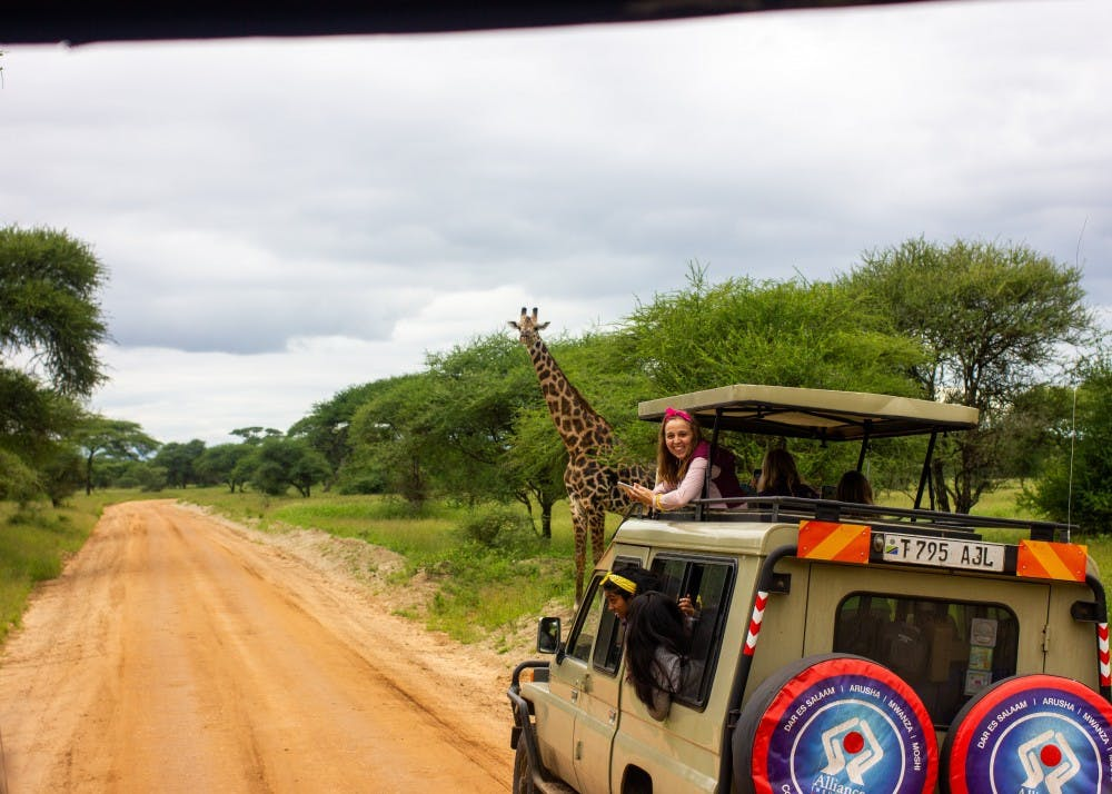 Immersion participants spot a giraffe while on safari in Tanzania.