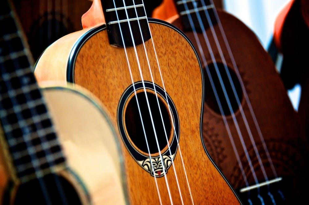 acoustic-acoustic-guitar-bass-258283