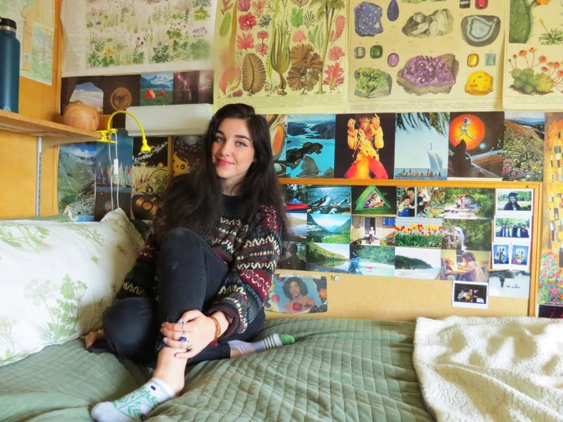 From the ceiling to the floor, Freshman Catherine Cieminski's walls are completely covered in posters and handmade collages.