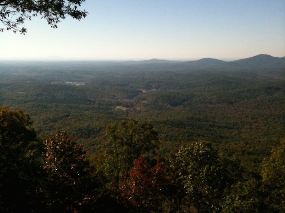 Rural Georgia.Photo courtesy of Thomas Fuller.
