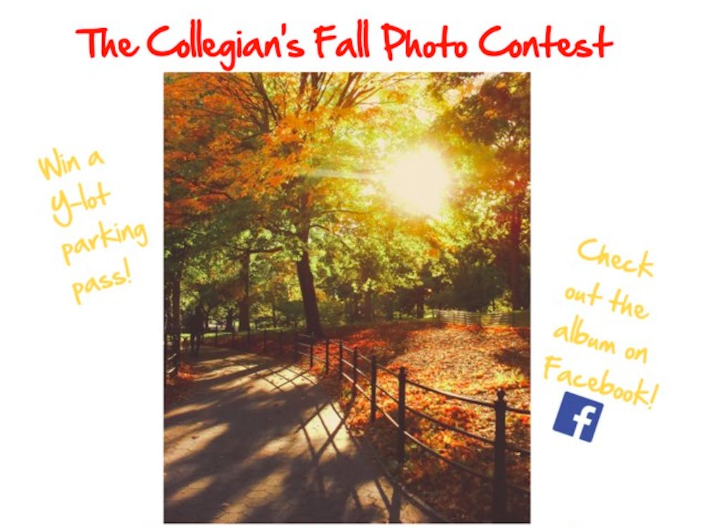Submit your photos to collegianstories@gmail.com by Friday, Oct. 23 | Graphic by Lauren Gill.