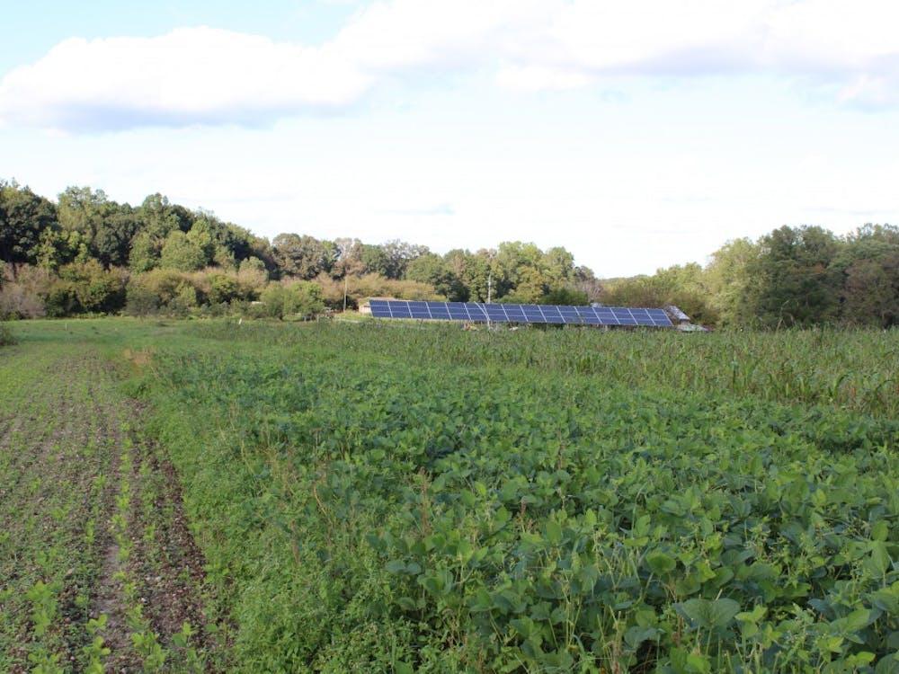 Solar panels on the Twin Oaks commune.